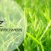 Blitz Lawnmowers